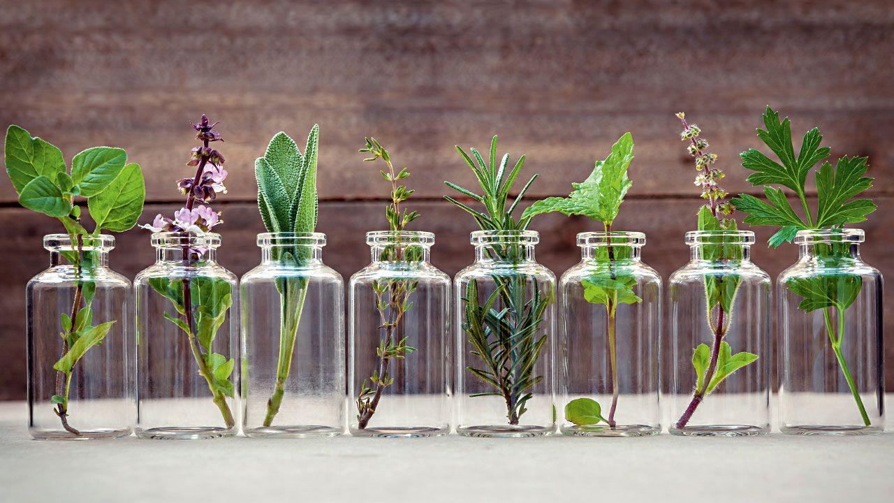 Aromatherapie Kräuter