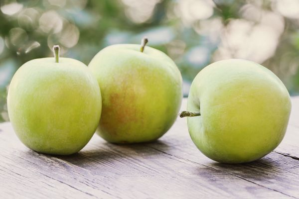 Liegende Äpfel