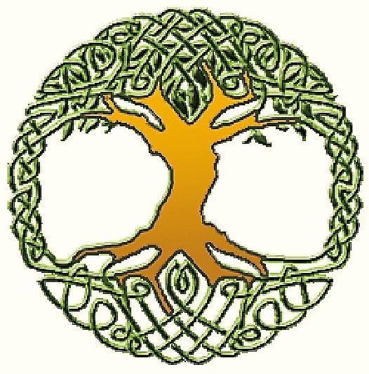 Logo der Dr. rer. nat. Kerstin Reider