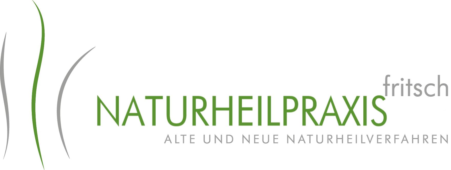 Logo der M.A. Dominik Fritsch Dominik Fritsch