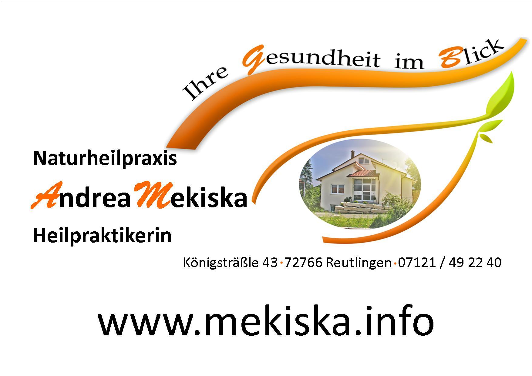 Logo der Andrea Mekiska