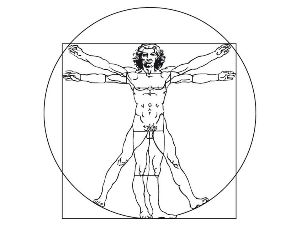 Logo der Daniel Siegl