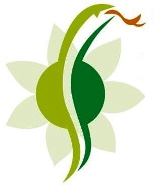 Logo der Andreas Kolles